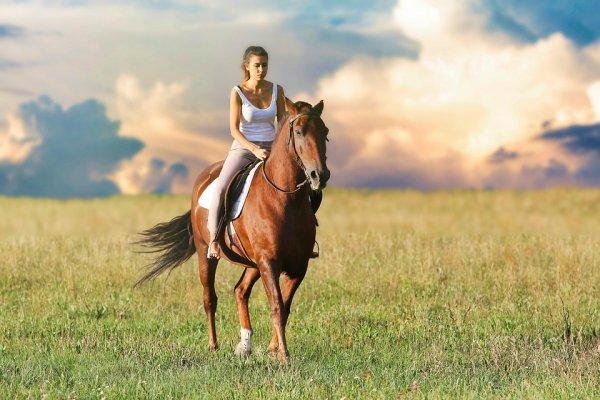 Passeio Cavalos