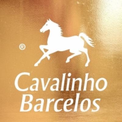CAVALINHO BARCELOS - MALAS E MARROQUINARIA