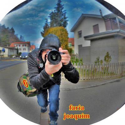 FOTO & VIDEO AMADOR - FARIA JOAQUIM DA COSTA