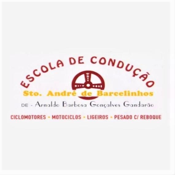 ESCOLA DE CONDUÇÃO SANTO ANDRÉ DE BARCELINHOS
